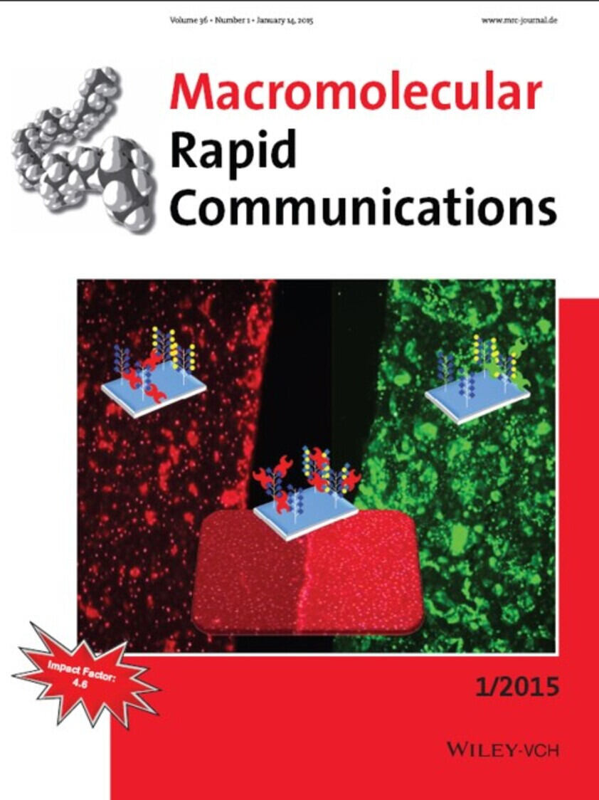 Back-Cover Macromolecular Rapid Communications